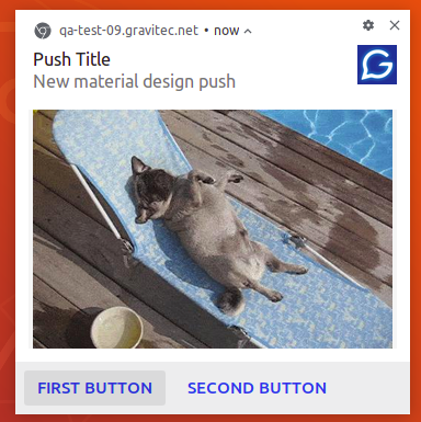 new material design push